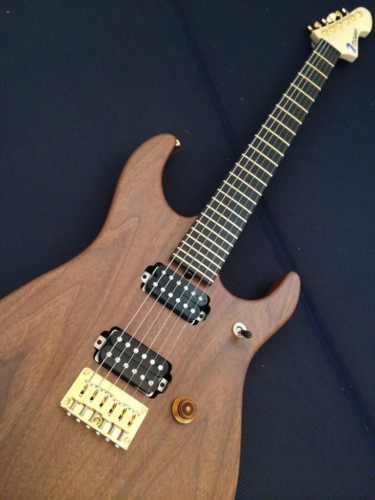 T's Guitars DST-24custom